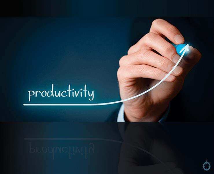 Technology and Productivity Growth